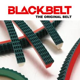 BLACKBELT COATED BELTS IN UAE